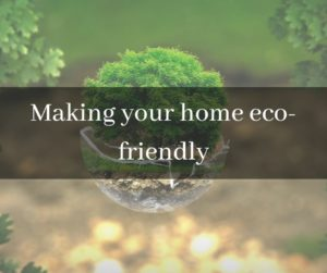 Eco friendly ways to improve your life, green conscious, environment, sustainable